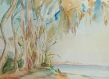 Paysages 03