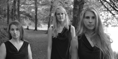 trio-03-vox-balaenae